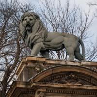 Leeuw op het Place du Trone in Brussel