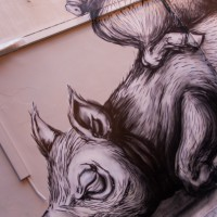 Dikke muurtekening van drie gestapelde varkens in Brussel