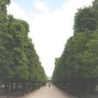 Parijs-Alee-centrale-2156