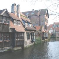 Brugge-2016-greentea-4077