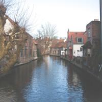 Brugge-2016-greentea-4078