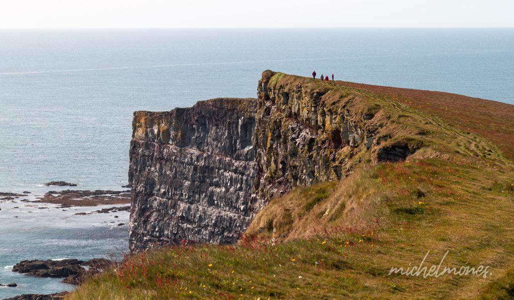 Latrabjarg, de bekendste broedplaats in IJsland voor papegaaiduikers en andere zeevogels.